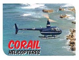 A French Touch Helicopter Tour