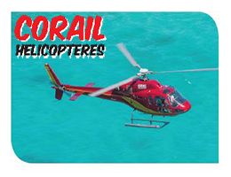 Discovery Helicopter Tour